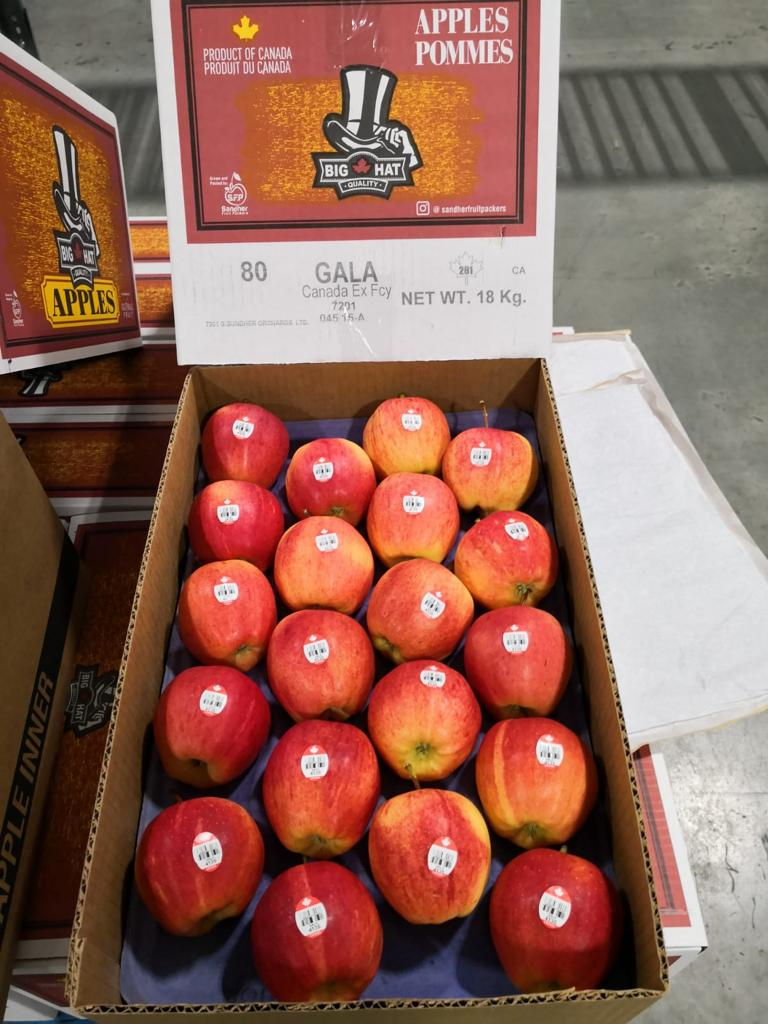 Canadian-Gala-Apples.jpg