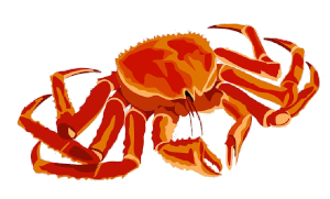 Crab_icon.png