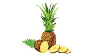 Pineapples-icon.png