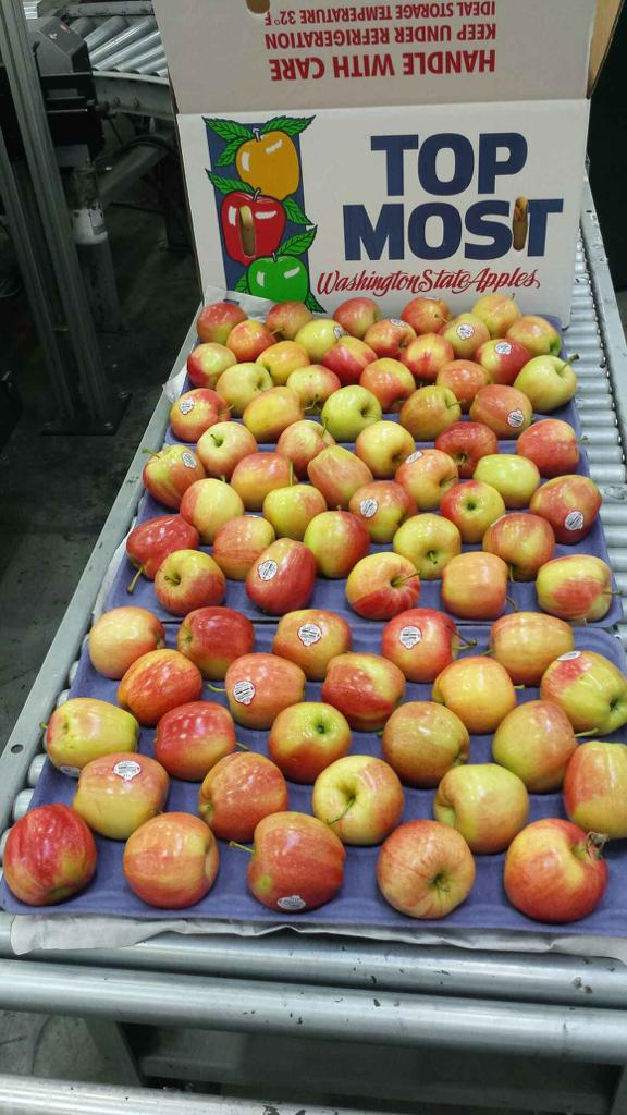 USA-Washington-Apples.jpg