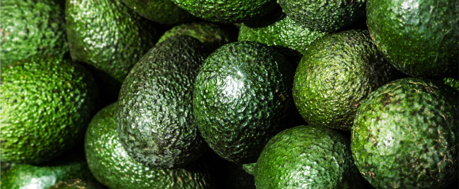 Freya Avocados