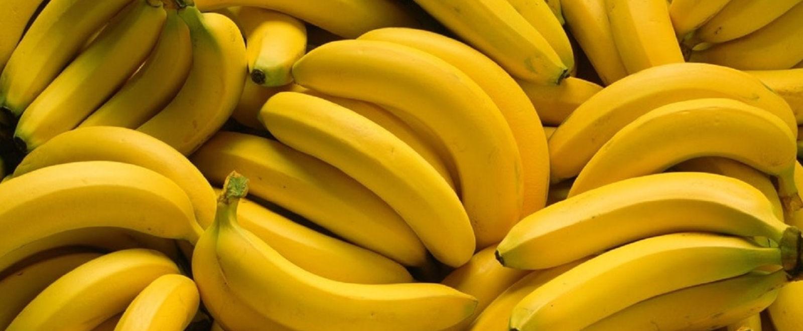 Freya Bananas
